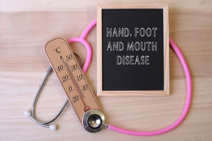 Mani bocca piedi
