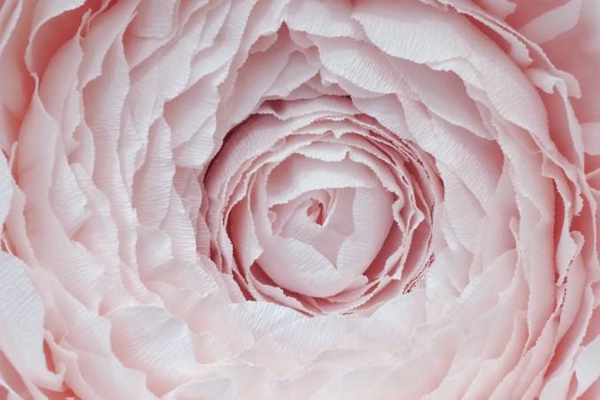 fiori decorazioni matrimonio
