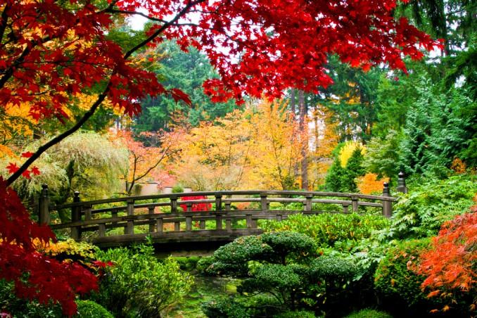 sfondi autunno desktop, sfondi autunno desktop gratis, immagini autunno