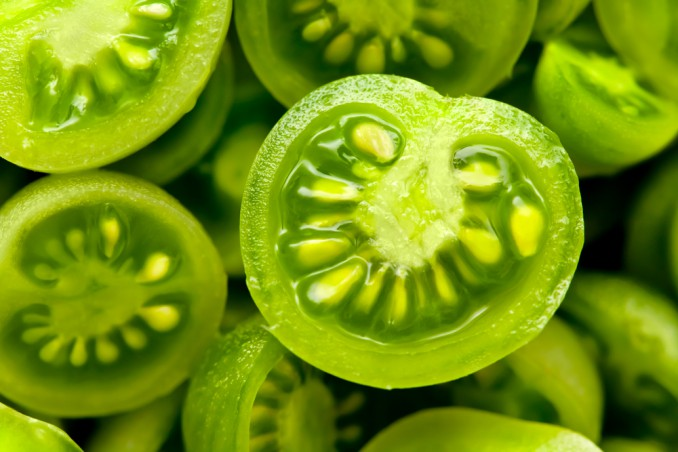 pomodori verdi umido