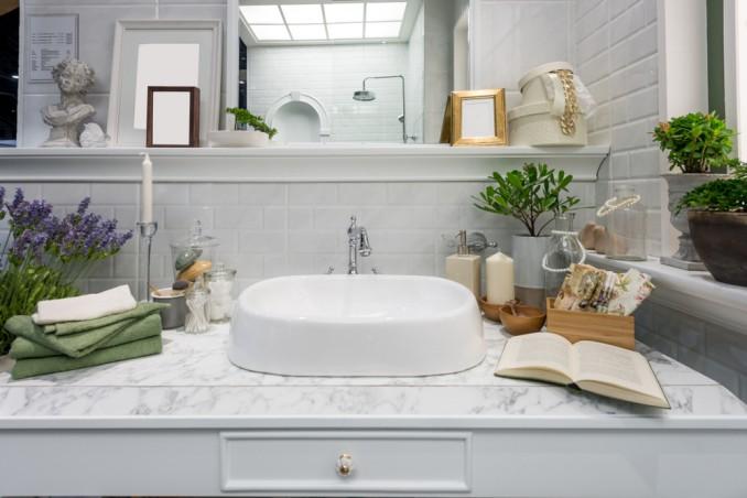 piante da mettere in bagno, piante bagno