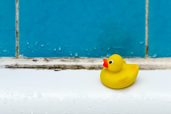 eliminare muffa bagno, soffitto, piastrelle