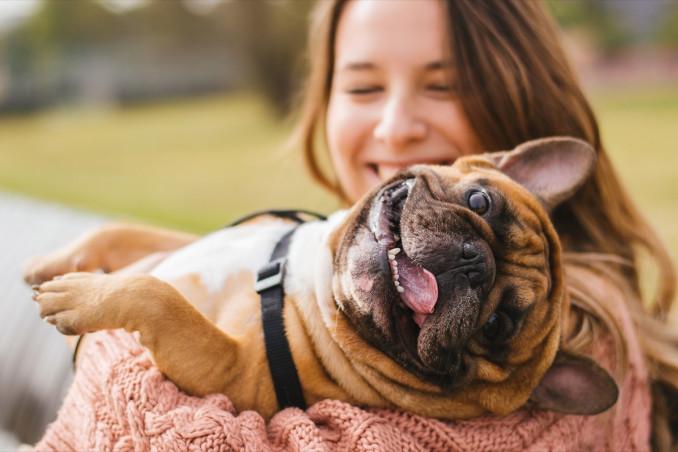 sogno, cane, abbraccio