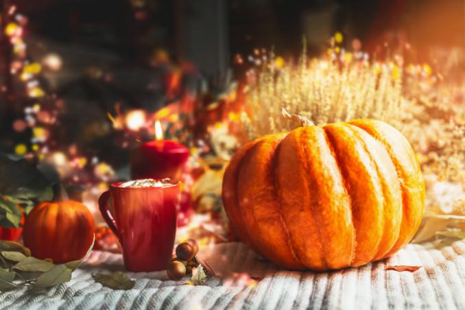 vetrine autunnali, vetrine autunnali idee, vetrine autunno