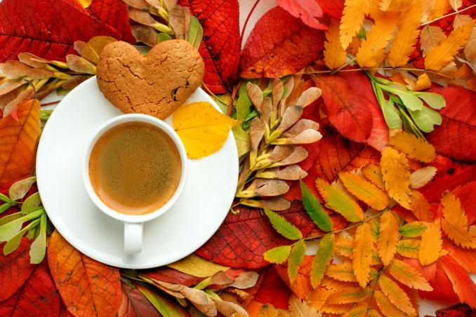 cosa fare domenica pomeriggio autunno, cosa fare domenica pomeriggio