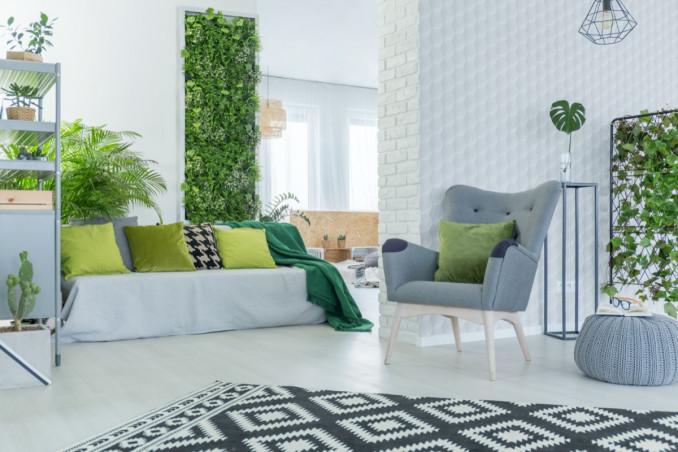 arredare, interno, piante