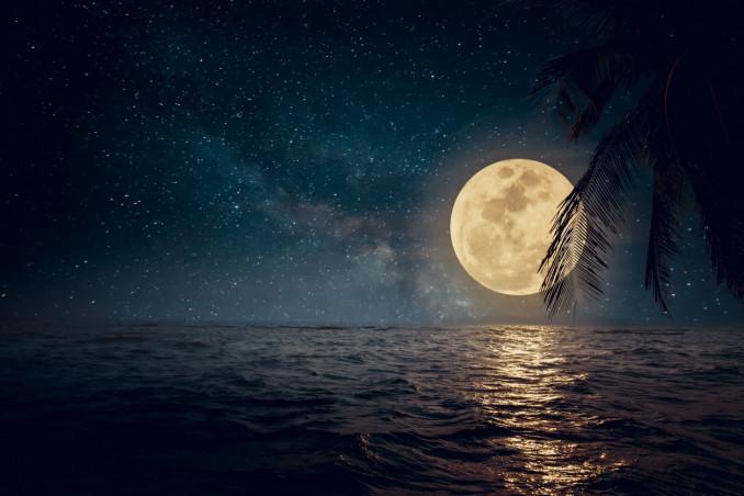 sognare, mare, notte