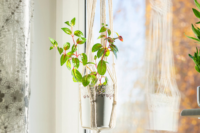 vasi sospesi piante fai da te, vasi sospesi fai da te, vasi sospesi piante