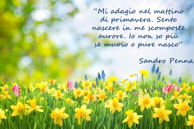 equinozio primavera immagini frasi, equinozio primavera immagini, equinozio primavera frasi
