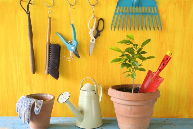 come togliere ruggine attrezzi giardino, come eliminare ruggine attrezzi giardino, ruggine attrezzi giardino