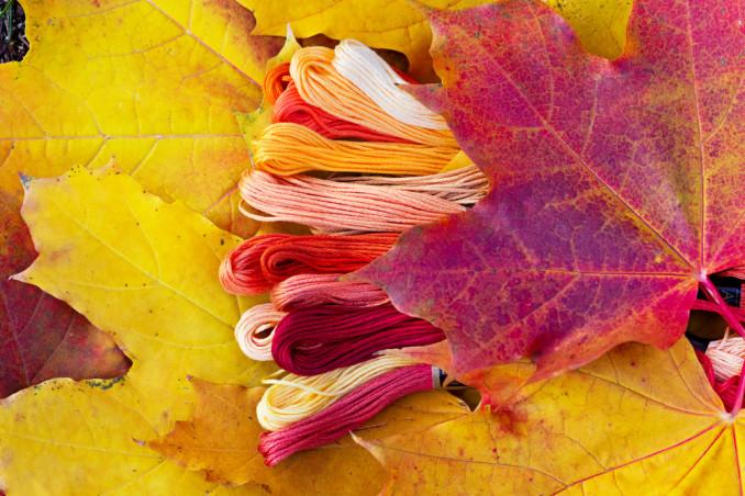 foglie autunnali punto croce, punto croce autunno