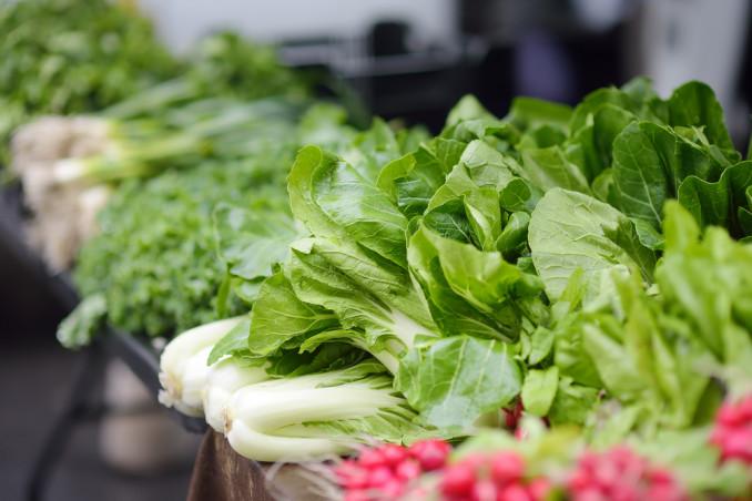 insalata verdura conservazione